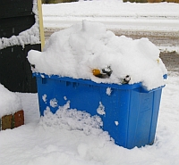 Recycling blue box covered in snow